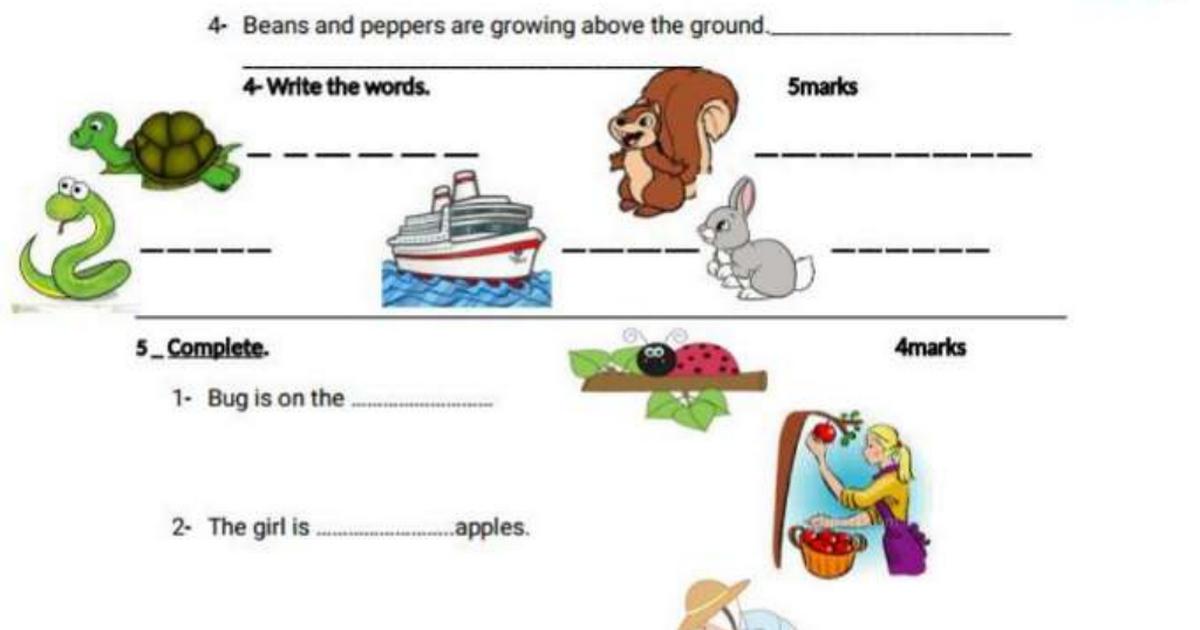 اللغة الإنجليزية ورقة عمل مراجعة للصف الثاني الفصل الثالث