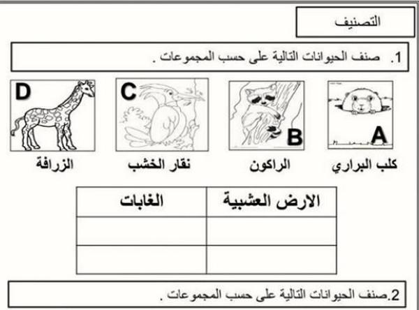 اوراق عمل علوم صف اول الفصل الثاني