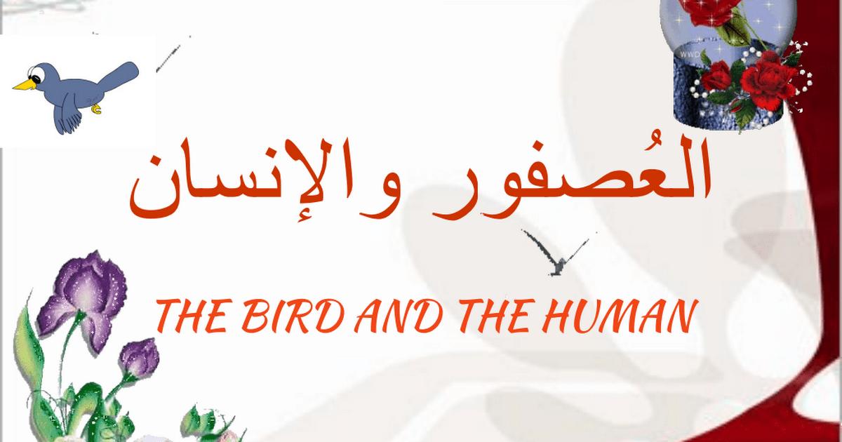 الحل لدرس العصفور والإنسان لغة عربية الصف الثالث الفصل الثالث
