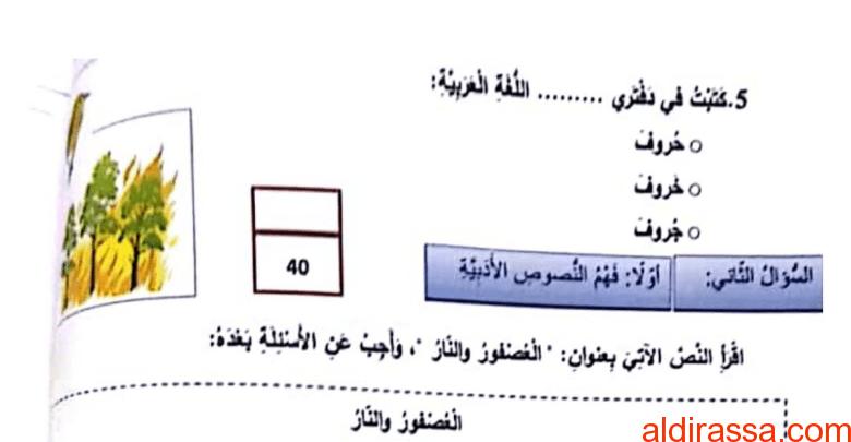 الصف الثانى امتحان نهاية الفصل الاول 2017 لغة عربية